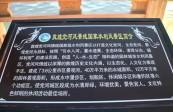 [綜藝體育-黃河戀]走進東亞文化之都 品味敦煌(一)——黨河風情線