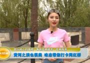 黄河之滨也很美 咏志带您打卡网红桥