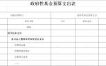 2019年部門預算公開表(傳播中心公示)