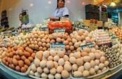 甘肃省发改委价格中心监测显示 上月蛋价每斤4元