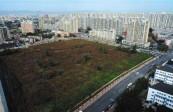 1月300个城市土地出让金总额3801亿元 环比降四成