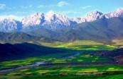 【綠水青山就是金山銀山】祁連山被破壞的山巖重披綠裝