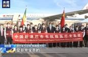 津总统高度评价中非团结抗疫特别峰会