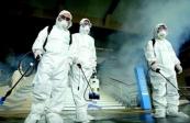 """综述:多国政要专家对新冠病毒溯源政治化说""""不"""""""