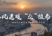 """春风送暖 """"众""""植希望 ——邮储银行甘肃省分行为八步沙添绿"""