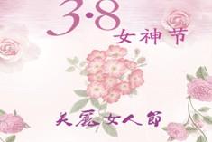 3.8女神节
