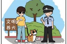 我市對不文明養犬行為開出多張罰單