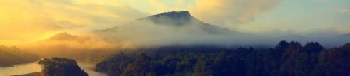 晨雾笼罩下的神秘汤旺河国家公园