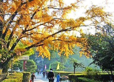 【兰视头条】本周天气以晴为主 欣赏秋景正当时