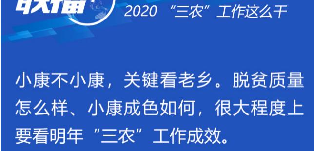 """聯播+丨劃重點!2020""""三農""""工作這么干"""