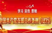 学习 宣传 贯彻 中国共产党支部工作条例(试行)