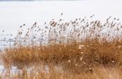 宏图传真——榆中沿川湖冬韵