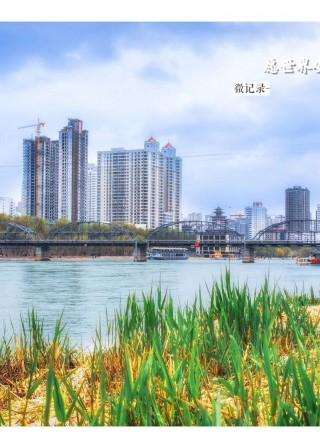 宏图传真——滨河泛绿